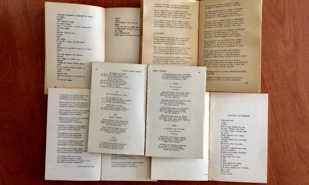 La poesía y el mundo de los versos
